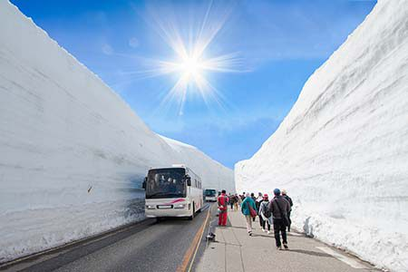 Snow Wall Tateyama_732567442_450